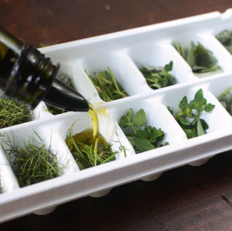 how to freeze fresh herbs in oil